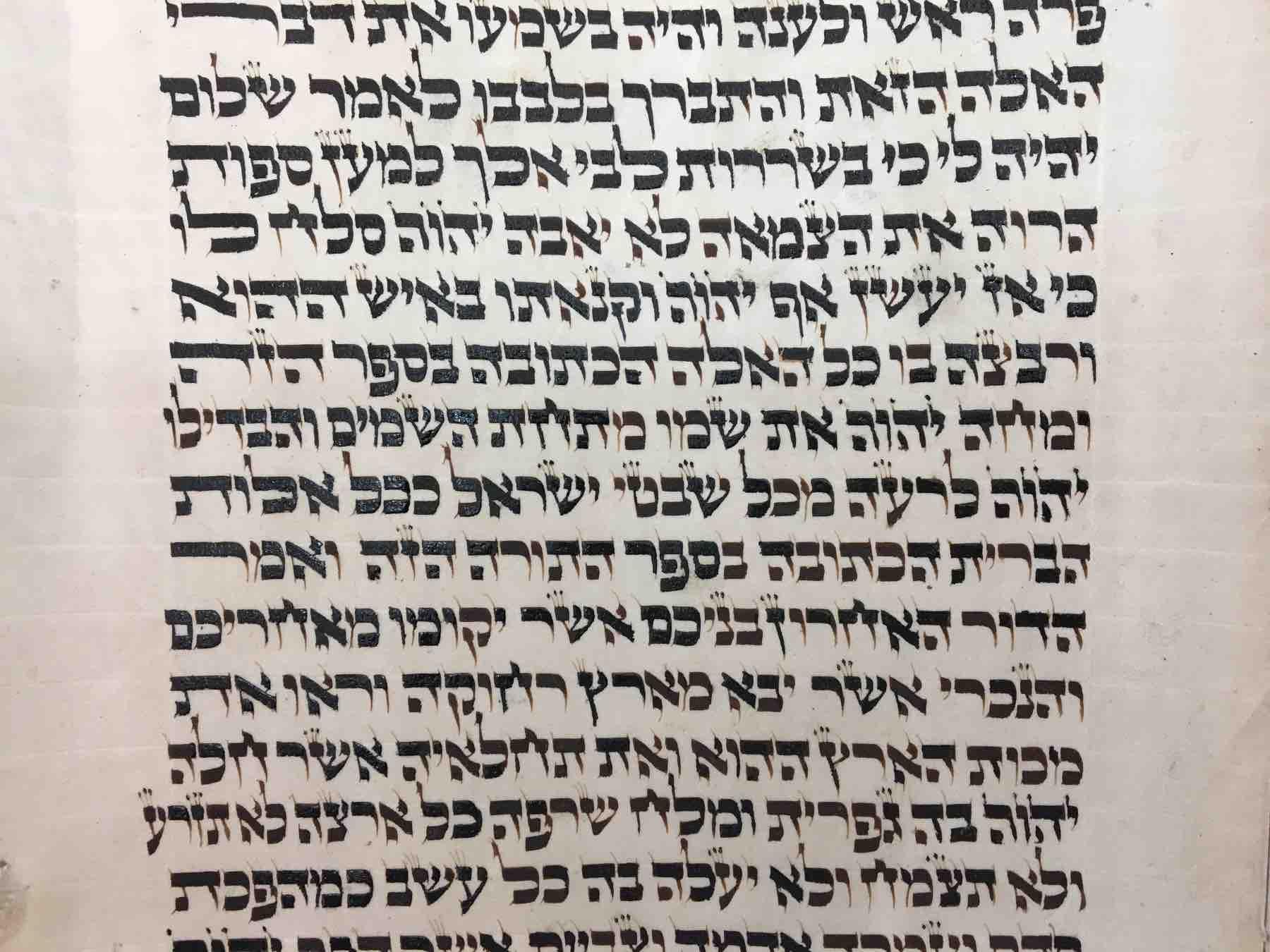 section of holocaust torah scroll after restoration