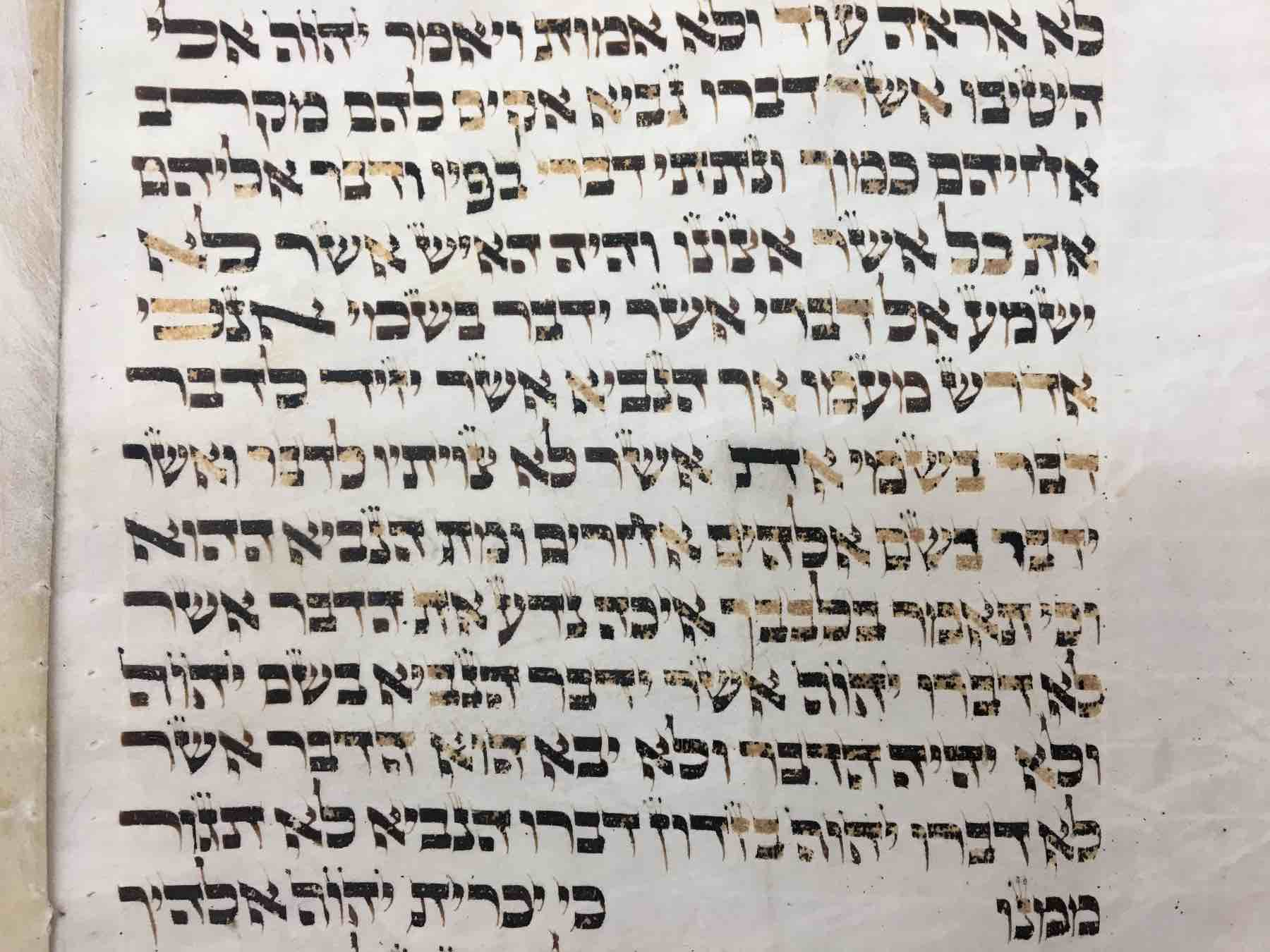 section of holocaust torah scroll before restoration