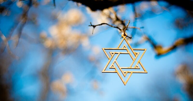 jewish star pendent hanging from a tree branch